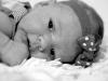 hawaii-portrait-photography-babies-24